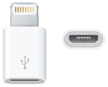 Lightning / micro USB