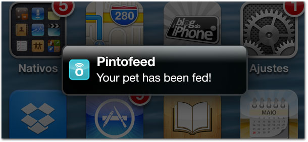 Pintofeed