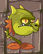 Boca-de-dragão
