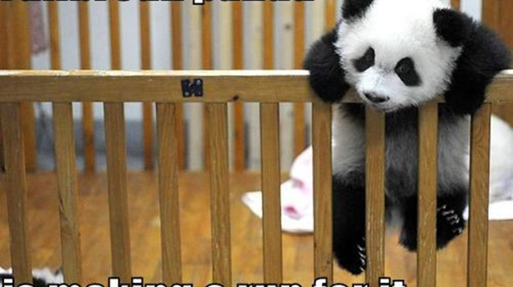 baby panda jailbreak