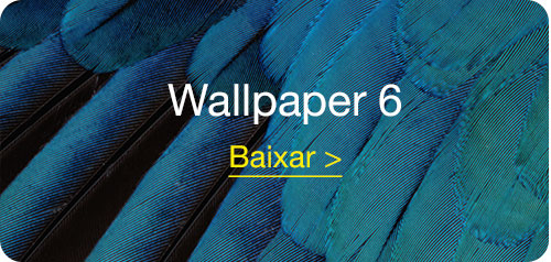 wallpapers_iOS9_BDI_6