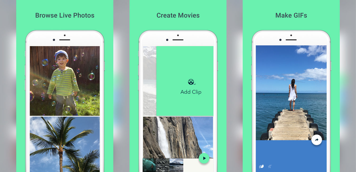 Photo of Google lança app para iOS que transforma suas Live Photos em GIFs animados
