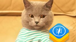 WebKit_GIF