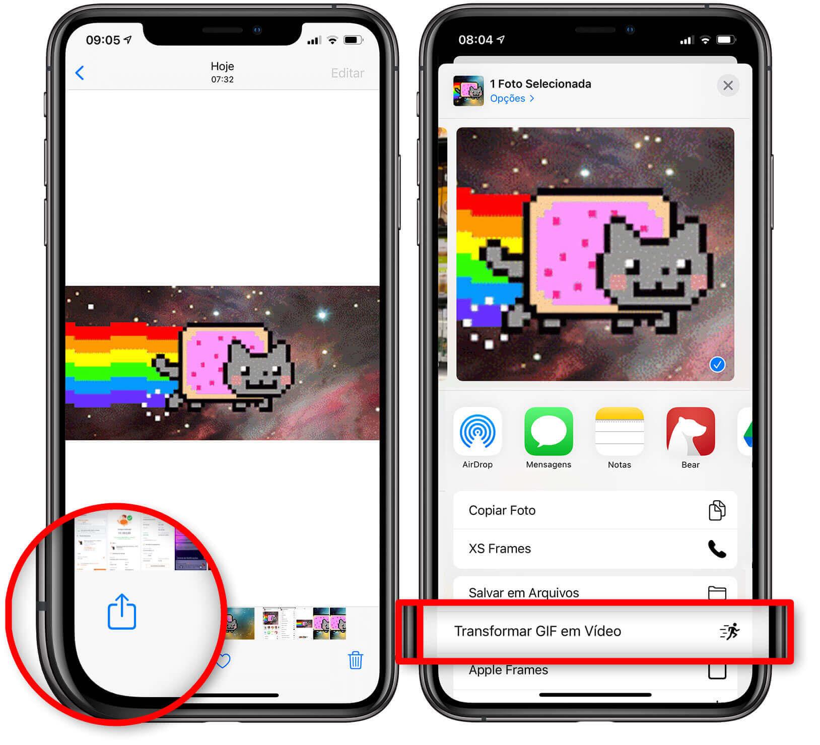 Transforme GIF em vídeo de iPhone